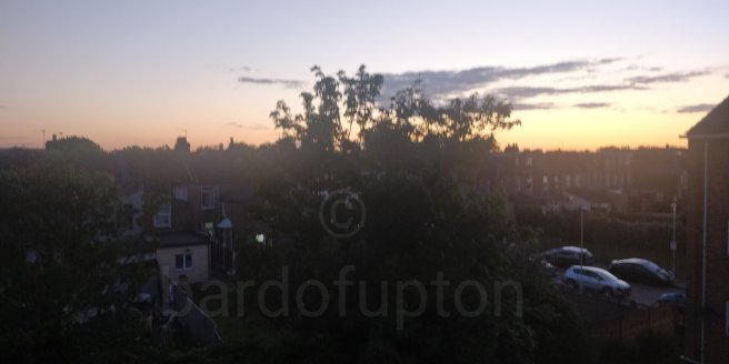 Sunset, tree in centre and houses